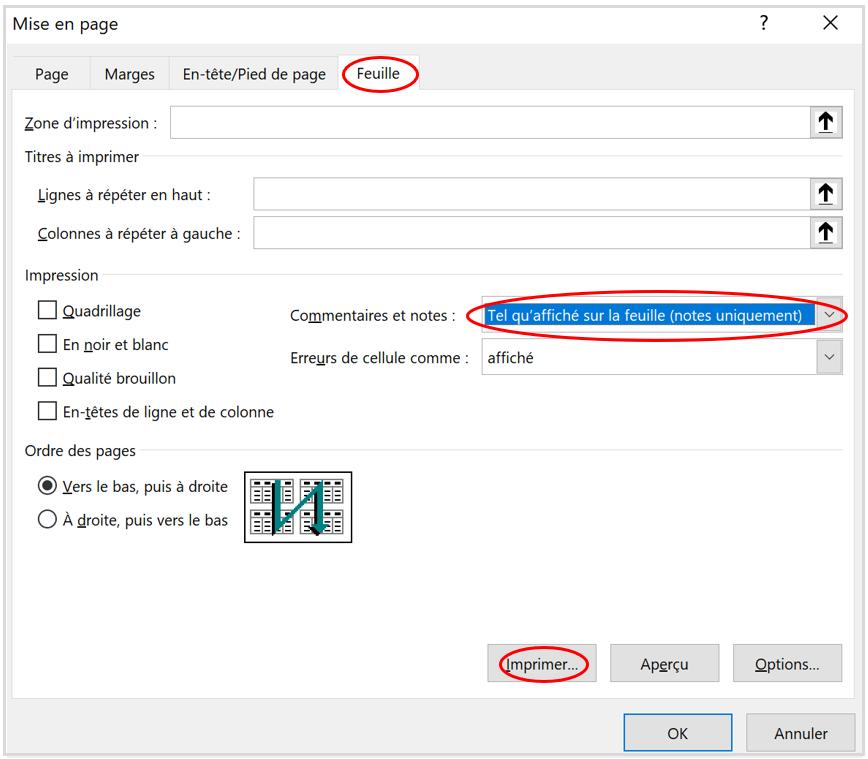 Imprimer les notes uniquement dans Excel d'Office 365